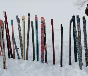 SnowSnakes